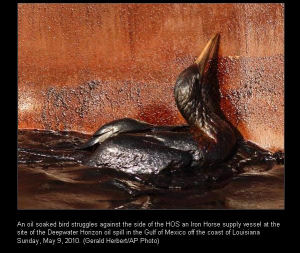 Another BP Oil Spill Victim