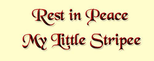 Stripee Memorial Rest in Peace